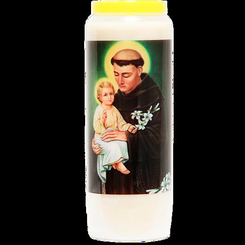 Saint Anthony candle-Multilingue/Mehrsprachig/meertalig/plurilingue