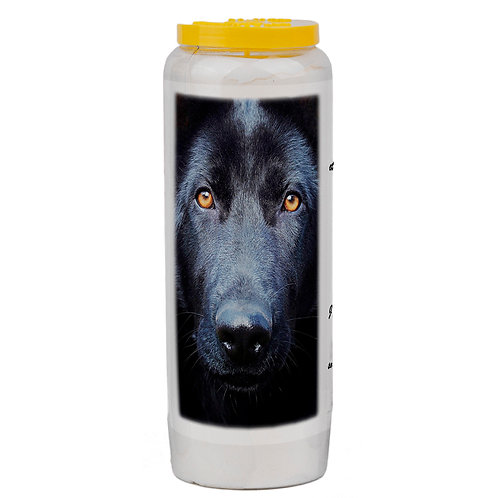 bougie neuvaines animaux chien dog candle priere prayer