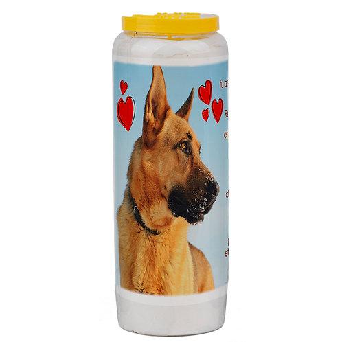 bougie neuvaine animaux de compagnie chien berger allemand