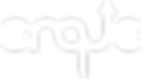 ENQUE white logo.png