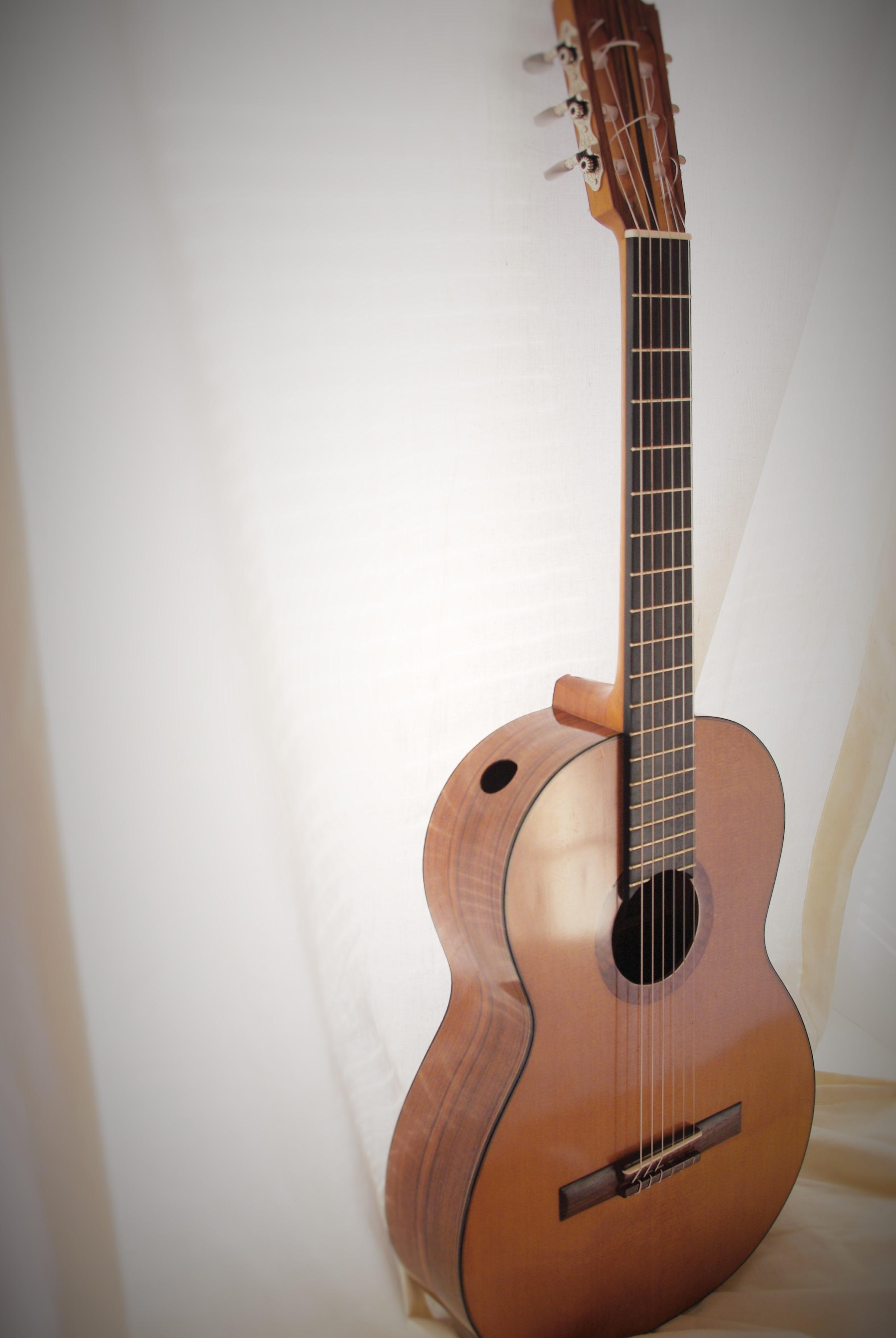 Classical guitar 2012