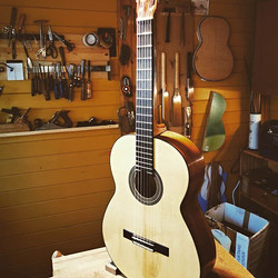 This guitar is made with a top from a tr