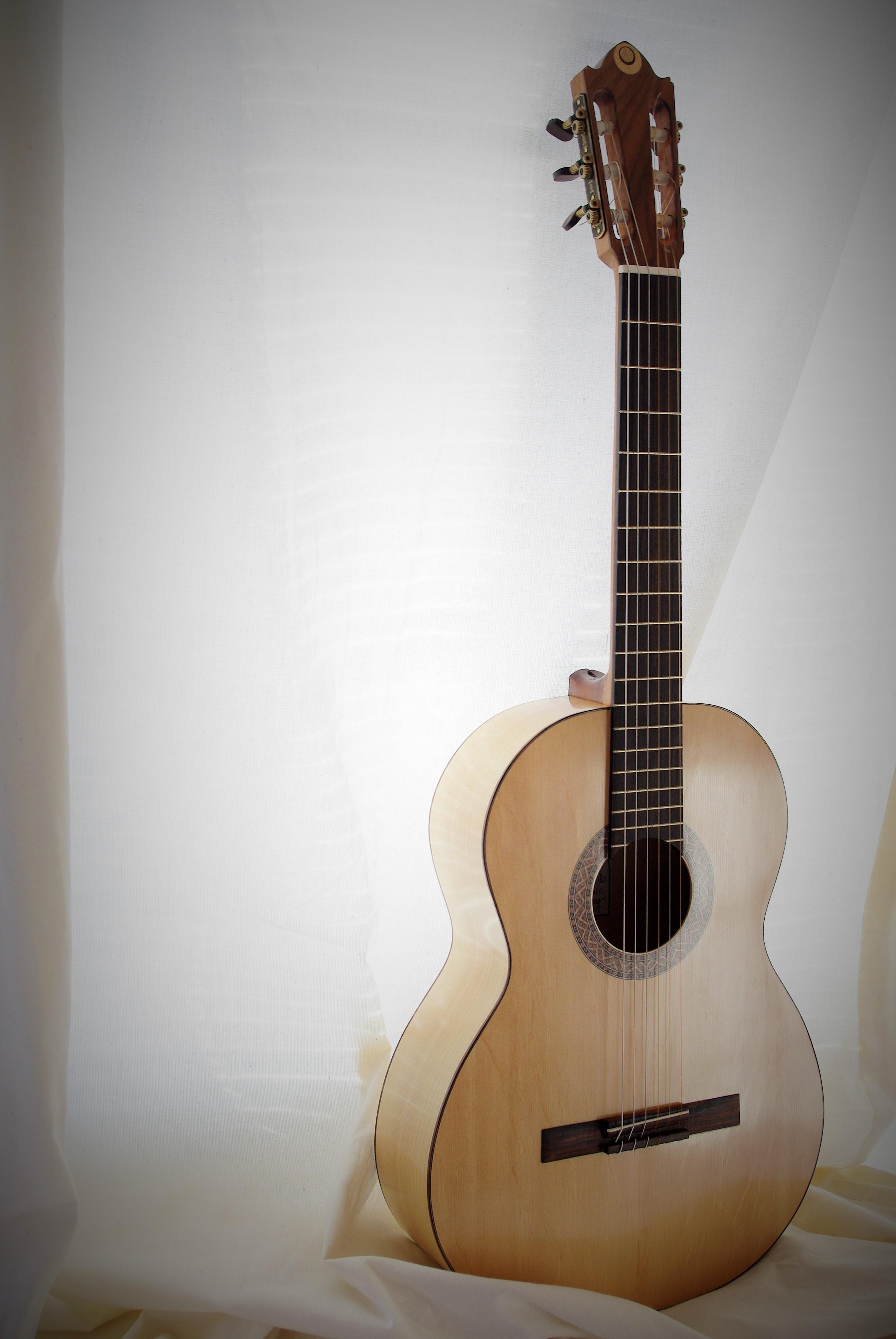 Flamenco guitar 2013