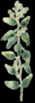 Blumen hochzeit münchen