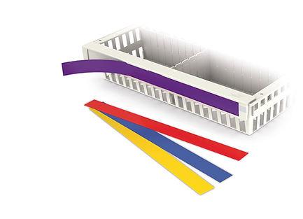 basket color strip2 2.jpg