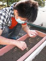 日中一時支援  野菜の種まき.jpg