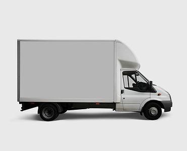 Camión del blanco de entrega
