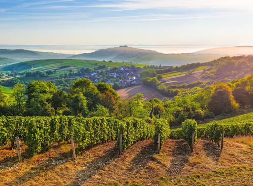 Toute la beauté des vignobles du Centre-Loire, résumée en une photographie