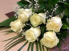 6 roses blanches 46$