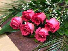 6 roses fushias 46$