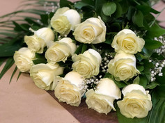 12 roses blanches 90$