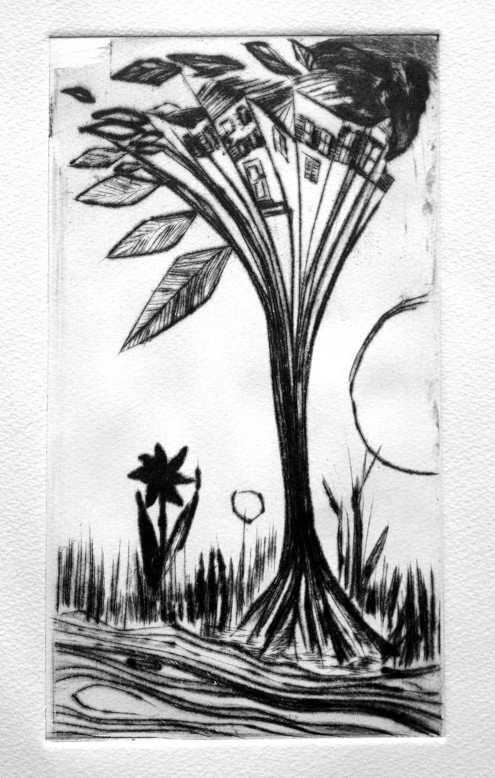 Habitant les arbres