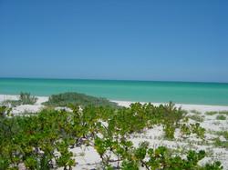 Beach / Playa