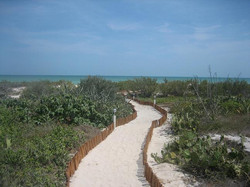 Take a walk down the Beach