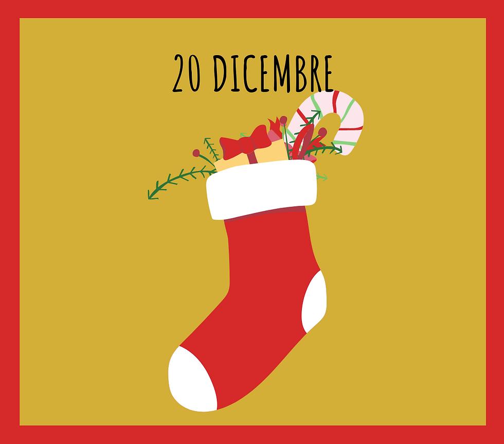 20 dicembre.png
