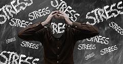 Stress, Stress abbauen, Stresslevel, Stress was tun, Stressanzeichen, Stress bewältigen, Stress Definition, Stress kontrollieren, Stress erkennen, Depression, Burnout, Stress und Psyche, Stress reduzieren, Stress Seminare, Stress Vortrag, Stress Symptome, Stresstherapie, Angst, Stress vermeiden, Stress verringern, Stress vorbeugen, Stress was tun, Stressauswirkungen, Stresshormone, Stressbewältigung, Stressoren, zu viel Stress, Stress-Experte, Stress Speaker