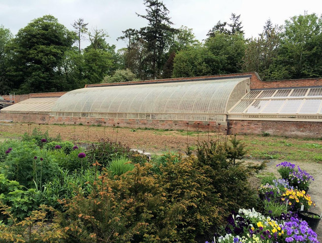 The surrounding garden creates a perfect setting for the restored glasshouse.