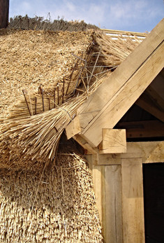Detail of a thatched roof going onto an oak timber frame.