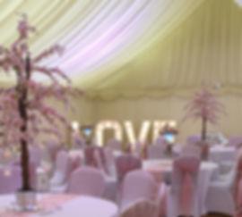 Elizabeth PK d&j- ACS Weddings.jpg