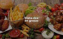 Dieta grasa