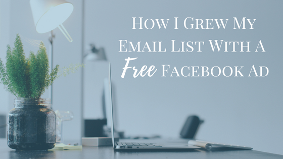 How I Grew My Email List With A Free Facebook Ad