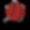 chikara logo official-01_edited.png