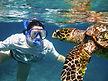 Snorkelling Seychelles.jpg