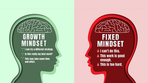 The Growth Mindset: Ways to fulfil your potential!