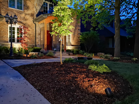 The Top Landscaping Trends for 2020!