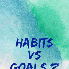 Habits vs Goals - what is your take ?