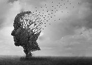 Alzheimer_EkamConseil.jpg