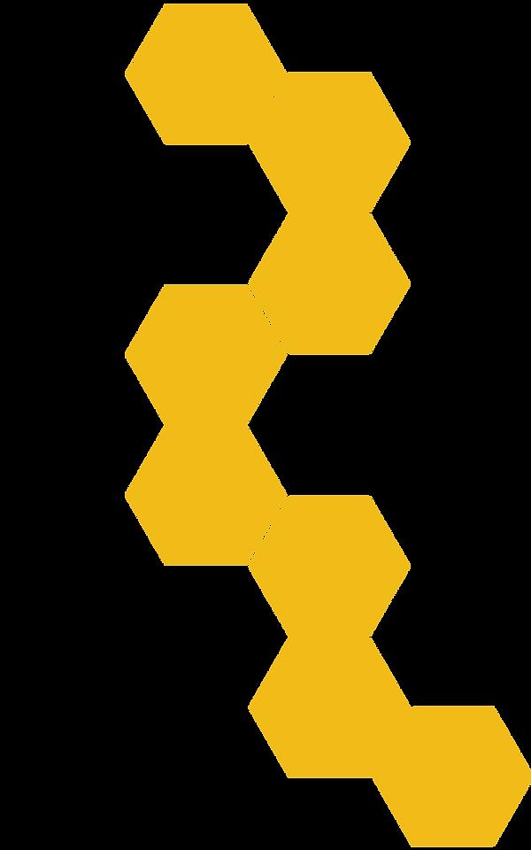 Ruche-Hexagones_V2.png