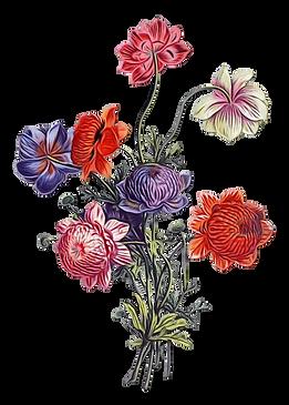 transparent-floral-design-5da5f7c2dcd3e3