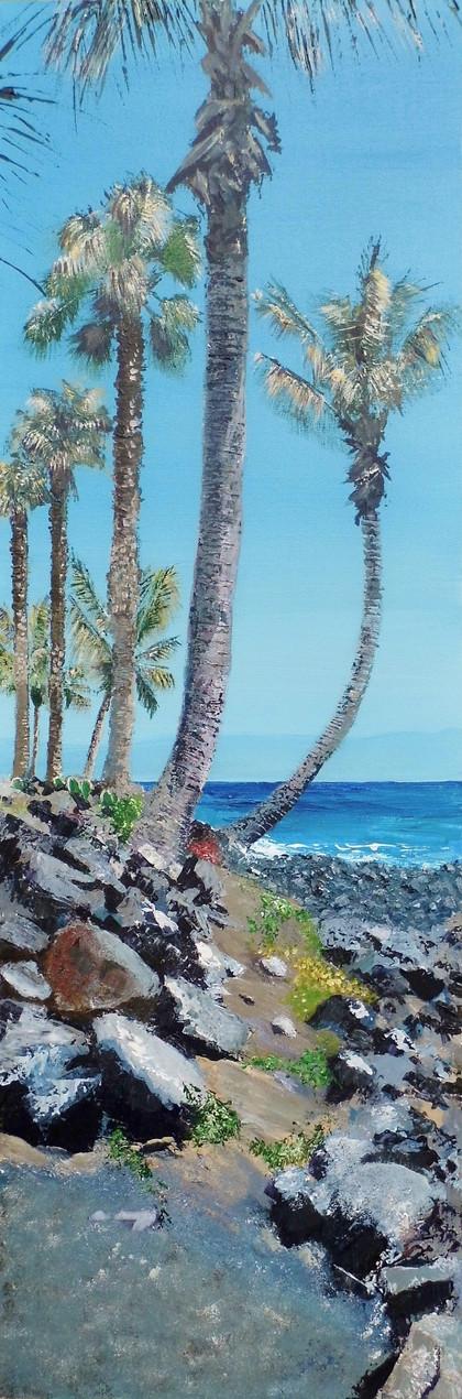 Palm trees, Lanzarote