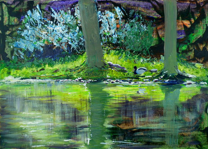 Duck pond, impression