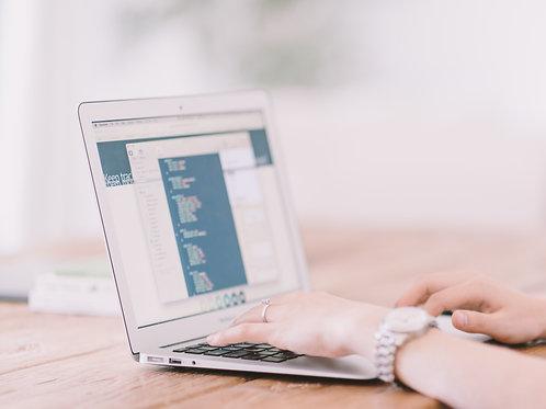 CV CHECK - online / by phone (30 min)