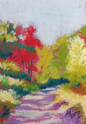 Fall Colors & Shadows