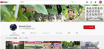 原田農園YouTube.jpg