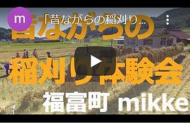 2020稲刈り動画.jpg