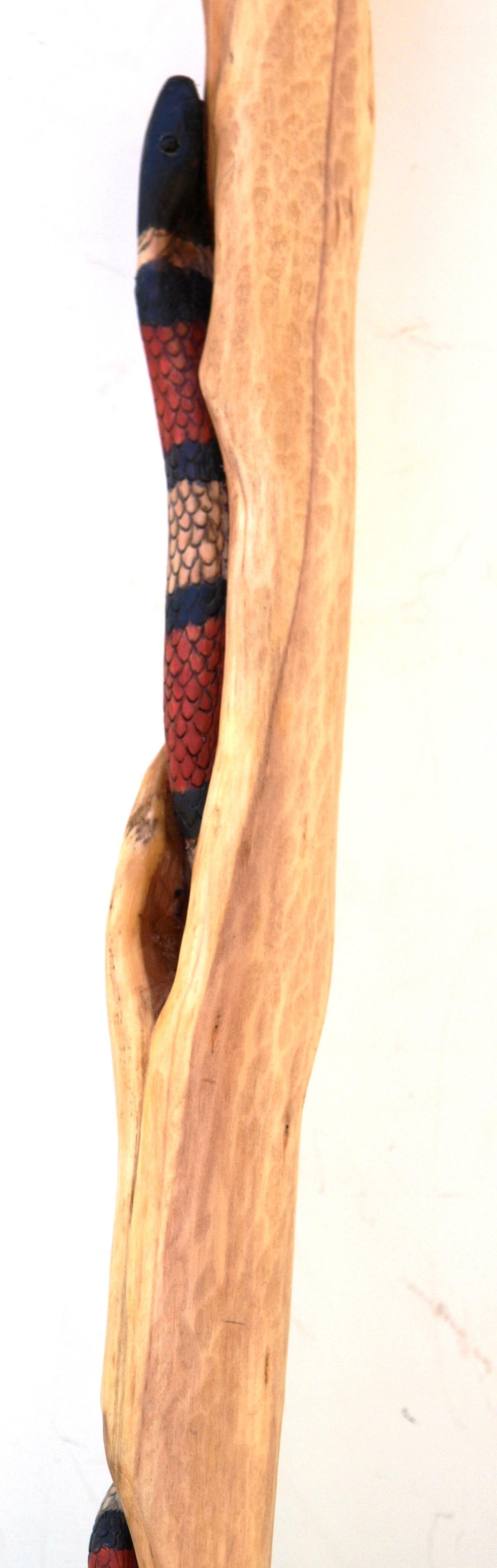 Snakes n Diamond Willow