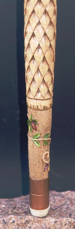 Vines on Hackberry Cane