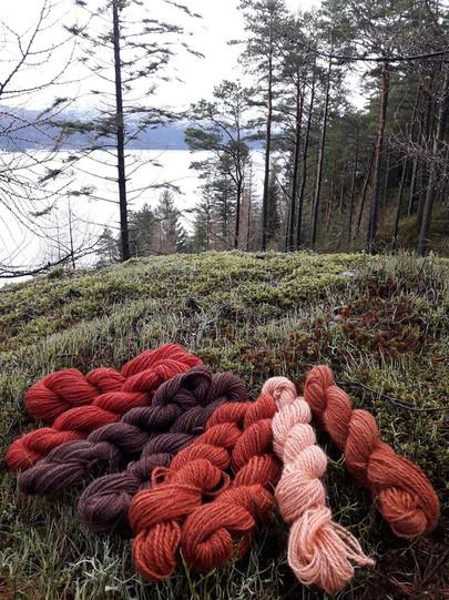 Nordfjordull