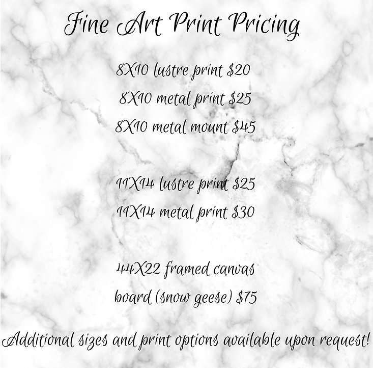 FA Print Pricing.jpg