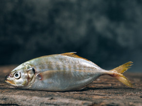 Fish is the Dish - try something new!