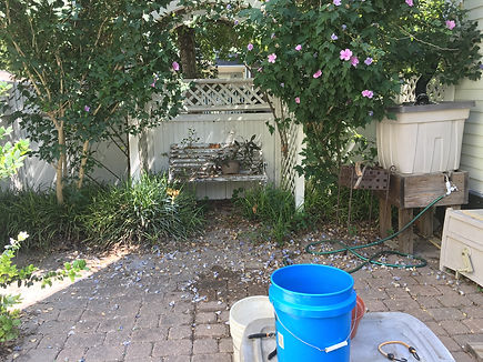 Patio before.jpeg