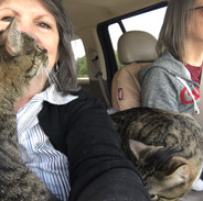 We did have a stretch where they were all in the front seat with us.