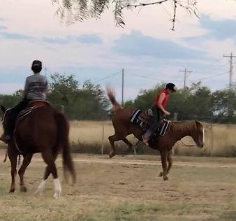 Bubba n Garrett n horses.jpg