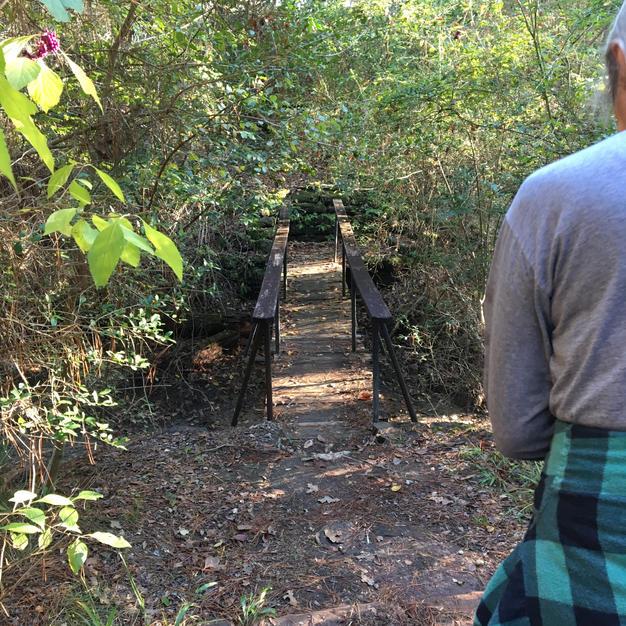 Along a hiking trail