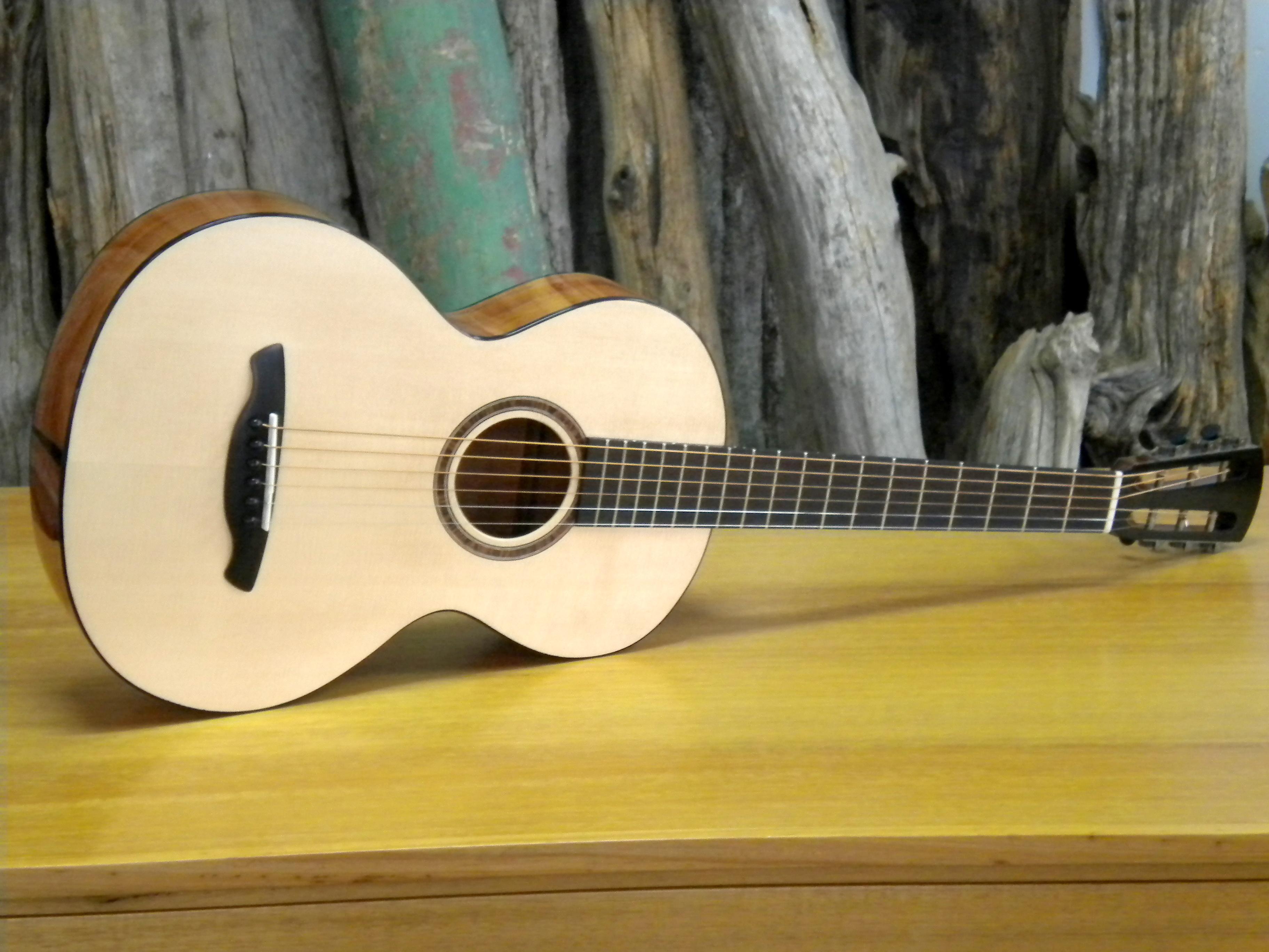 parlour guitar 1.JPG