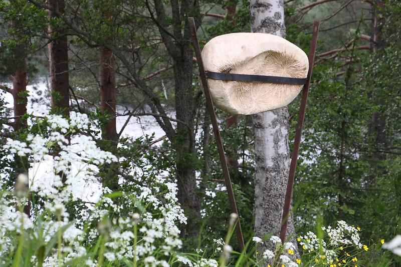 Homenatge a la Natura 6.jpg